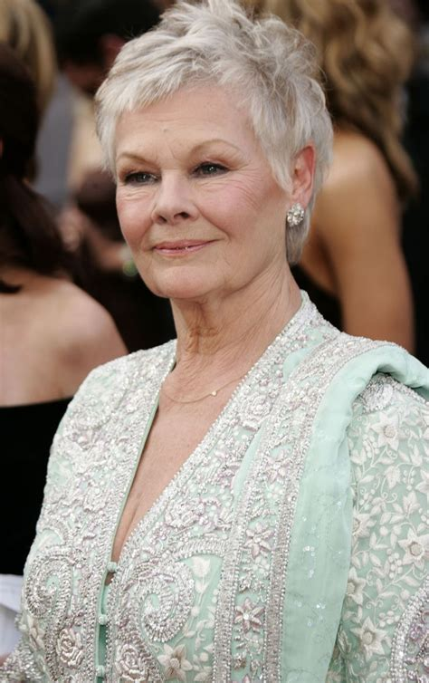 What Products To Use To Get Judi Dench Hair   what products to use to get judi dench hair best 25 judi