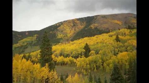 colorado color aspen colorado fall colors 2012