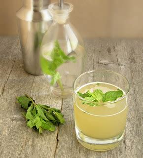 Fo Gourmet Mojito Mint Cafe Coffee Original Syrup 700 Ml hungry orange mojito with mint syrup