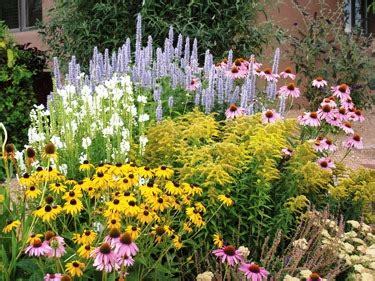 high country gardens tips tools and gardening secrets