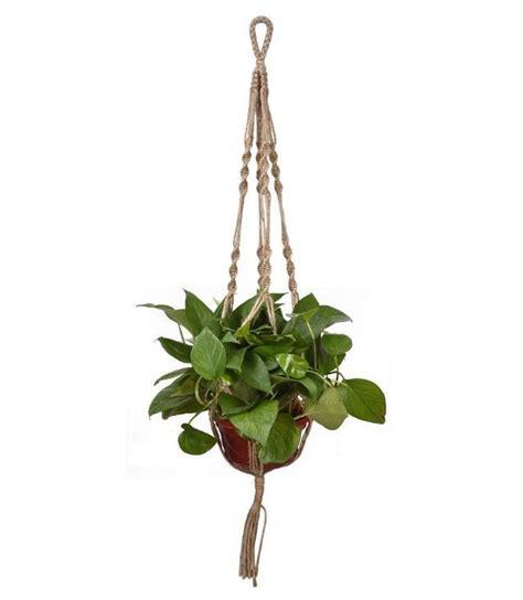 Macrame Plant Hanger Supplies - macrame plant hanger 36 quot
