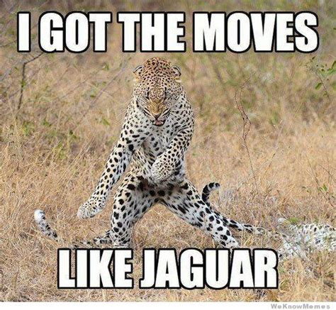 Jaguars Memes - moves like jaguar weknowmemes