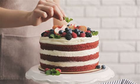 Professional Cake Decorating by Professional Cake Decorating Course Course Reed Co Uk