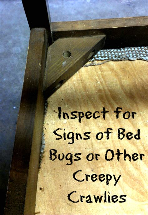 signs of bed bugs in couch 3 easy steps to keep bed bugs out of your up cycle project