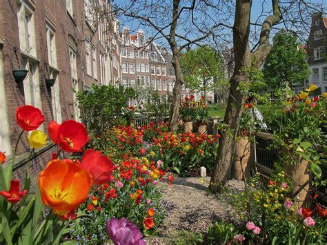 tuinen amsterdam gardens in amsterdam