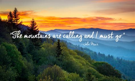 quotes about nature 24 of the most beautiful quotes about nature