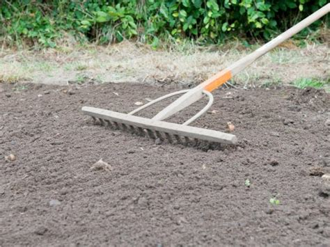 how to prepare soil for planting a lawn how tos diy