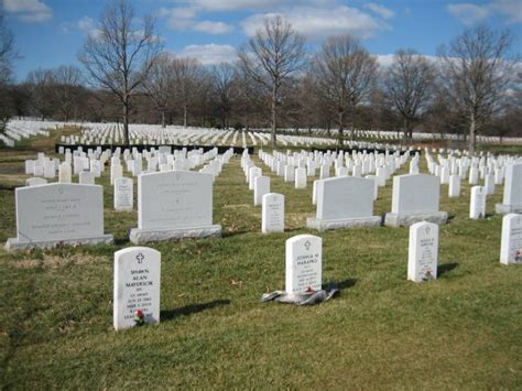 arlington national cemetery section 60 valentine s day rememberance at arlington national