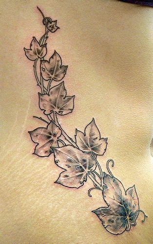 ivy leaf tattoo designs 25 best ideas about on celtic