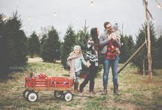 christmas tree farm happy valleyvadelaide and minis photography sessions in the woods photo shoot featuring a