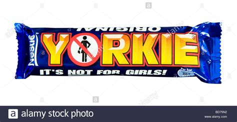nestle yorkie nestle yorkie chocolate bar in studio stock photo royalty free image 25359070