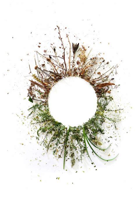 tatuaggio fiore della vita circle of still jo hoffman x nel 2019
