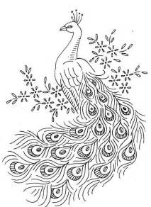 peacock coloring page peacock birds coloring pages