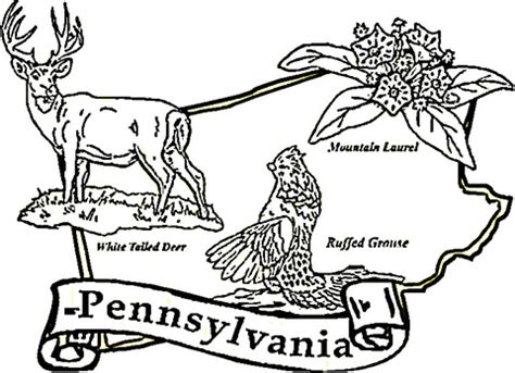 Pennsylvania State Bird Coloring Page 301 moved permanently