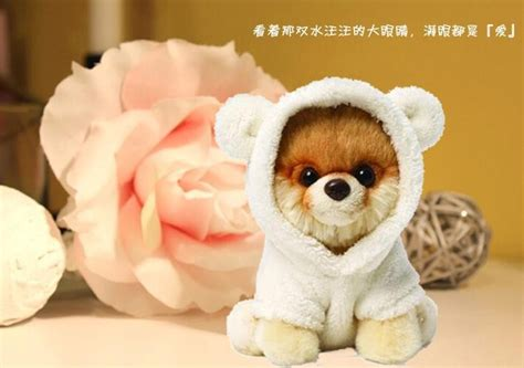 pomeranian boo price manufacturers selling mobile power supply gunded boo tactic plush doll