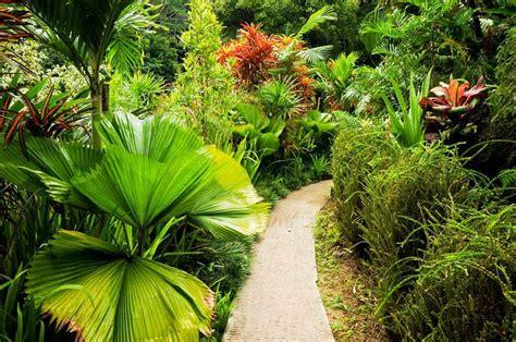 Seychelles Botanical Garden Mahe Sea Sand Absolute Seychelles Guide