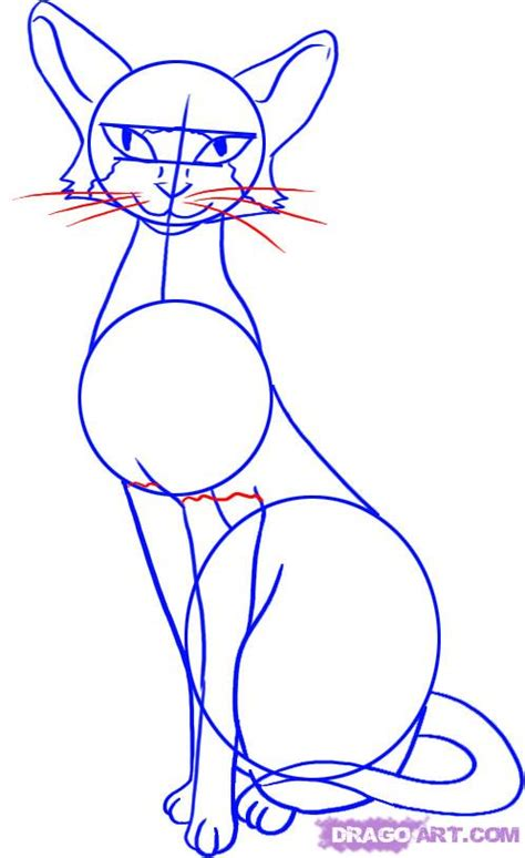 cat step step how to draw a siamese cat step by step pets animals