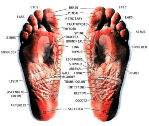 Detox Machines Do They Work by Ionic Foot Detox Calabash Health Center Offering