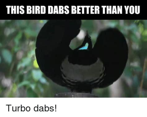 is dabbing better than 25 best memes about memes memes meme generator