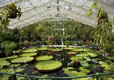 Kew S Royal Botanic Gardens And Palace Tickets Golden Tours Kew Botanical Garden