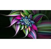 Flowers 3D Wallpaper HD 4803  WallDiskPaper