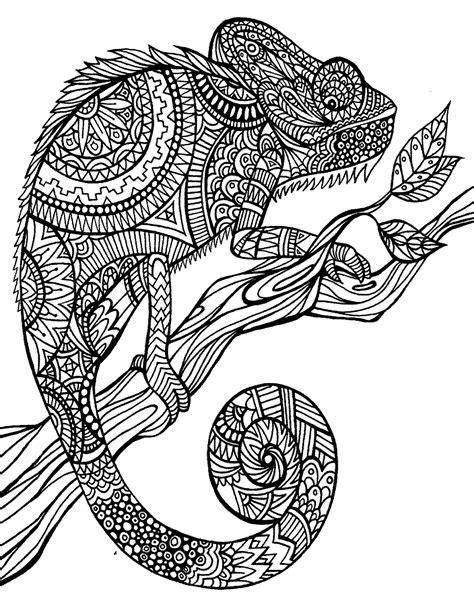 9 Gambar Mewarnai Binatang untuk Dewasa - murid 17