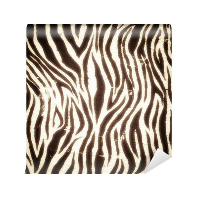 zebra pattern png vintage zebra pattern wall mural pixers 174 we live to change