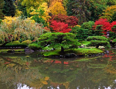 Garten Japanisch Pflanzen by Japanese Garden Plants