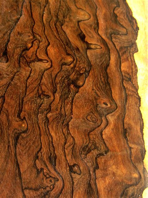 Woodwork Exotic Wood Grain Pdf Plans