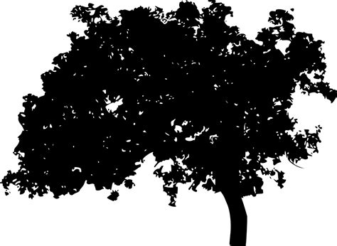 silhouette background 10 tree silhouettes png transparent background onlygfx