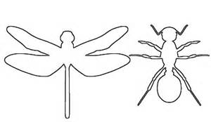 Bug Template by Fish Outline Template Cliparts Co