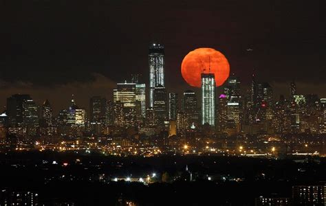 moonlight manhattan from manhattan with books will save viola in everything