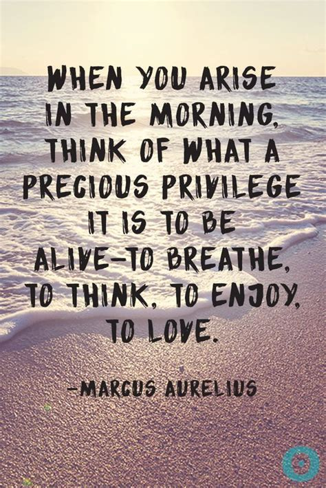 25 best morning quotes on morning 25 best morning quotes on positive morning