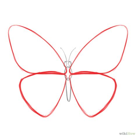 How To Draw Butterfly How To Draw A Butterfly 14 Steps With Pictures