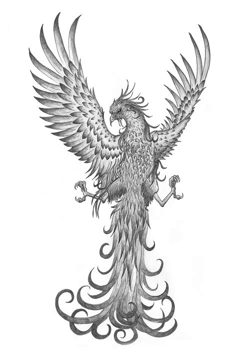 black and grey phoenix tattoo designs 65 best flying tattoos designs with meanings