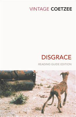 themes in the book disgrace disgrace by j m coetzee disttorted