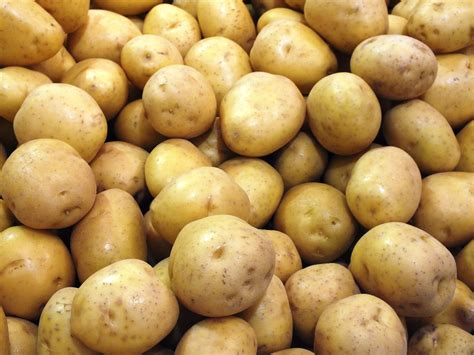 Potato Free by Potatoes Textures Free Background Potato Texture