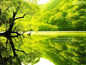 green tree landscaping touching hearts green green