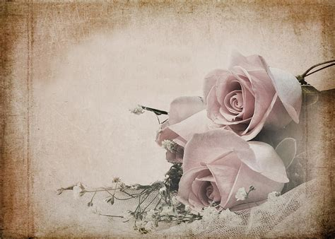 vintage images vintage roses mixed media by trudy wilkerson