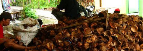 Jual Batok Kelapa Mentah kerajinan batok kelapa tempurung kelapa tas batok