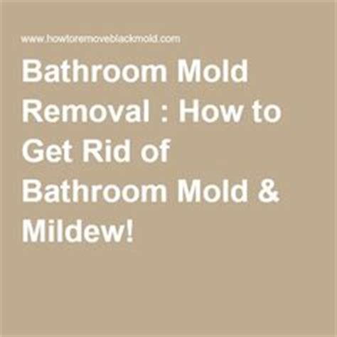 how to get rid of mildew in bathroom mold removal basements and woods on pinterest