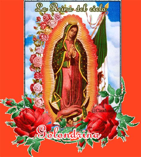 imagenes hermosas virgen de guadalupe imagenes de rosas con animaciones de la virgen de guadalupe
