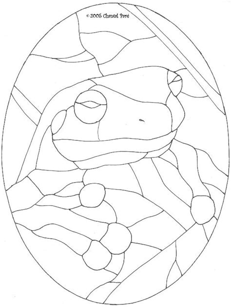 glass frog coloring page frog patterns az coloring pages