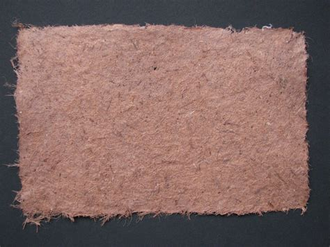 How To Make Paper From Plant Fibers - handmade paper black willow fiber sheet plant fiber paper