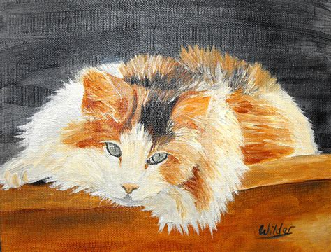 calico cat painting calico cat painting by shari wilder