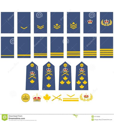 canadian military rank structure for the air force navy and army canadian air force insignia stock vector illustration of
