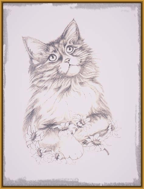 imagenes a lapiz de gatos esplendidos dibujos de gatos en lapiz dibujos de gatos