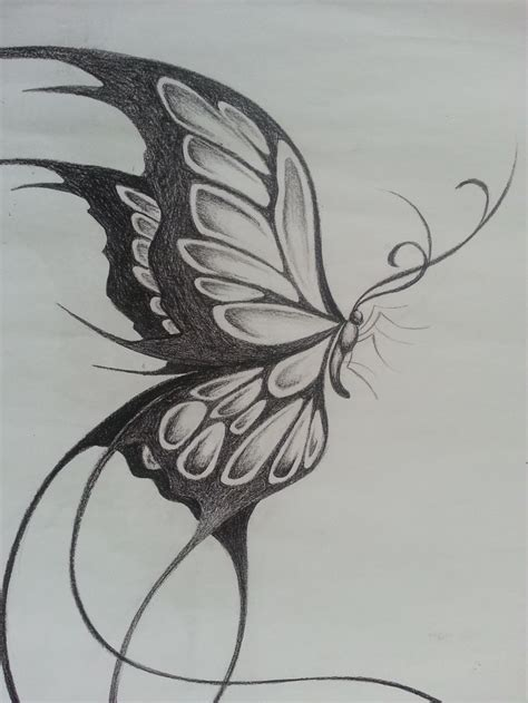tattoo butterfly sketches 24 best doodle butterfly outline tattoos images on