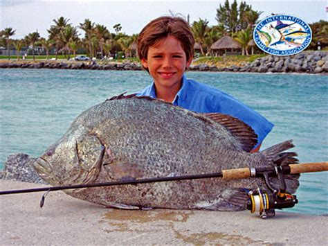 Records Florida Florida Fishing Records Florida Sportsman