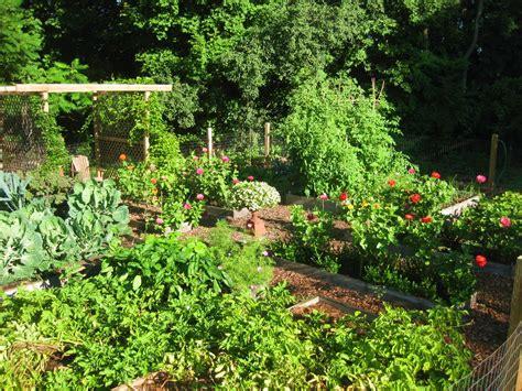 the easy kitchen garden the easy kitchen garden
